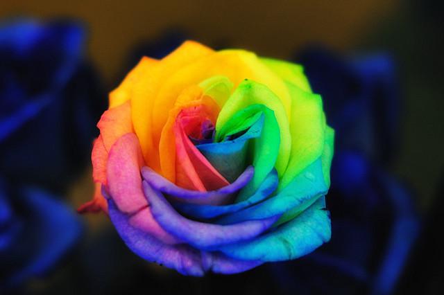 terapia-colores-akirelax