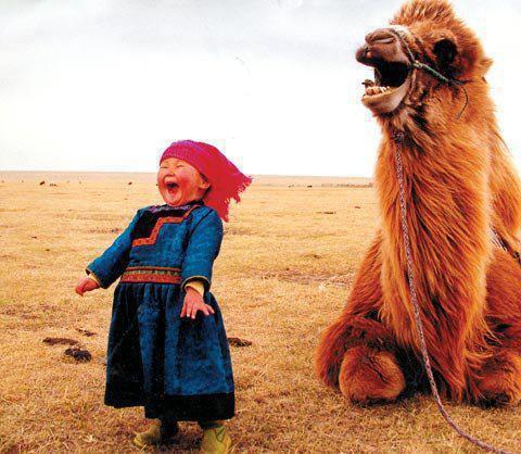 meditacion y felicidad