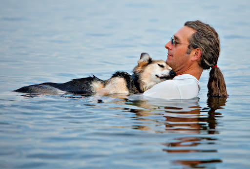 John Unger-perro-enfermo