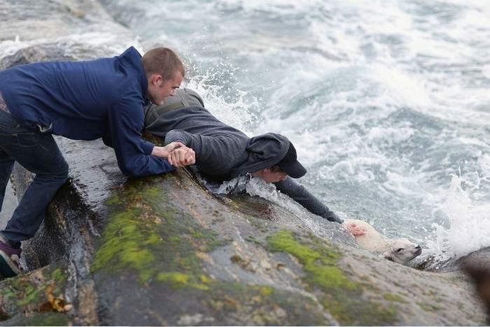 rescate-jovenes-noruegos-salvan-cordero