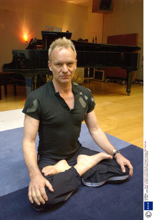 famosos-yoga-sting-akirelax