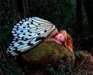 mariposas-akirelax