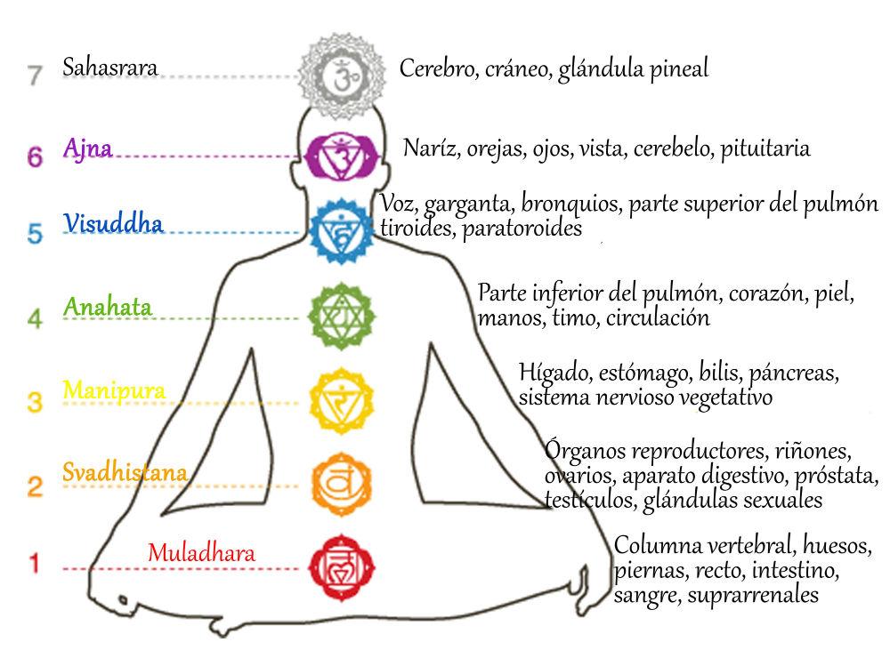 Significado de los chakras. Los Chakras y la Astrología. Tu Cuerpo energético.