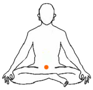 Chakra 2 Significado del segundo chakra Swadhisthana