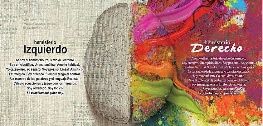 Como actúa la meditación en el cerebro