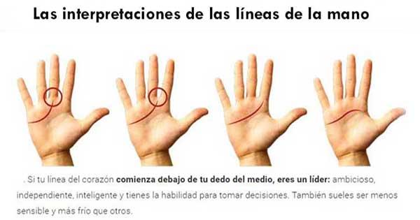Leer las líneas de las manos