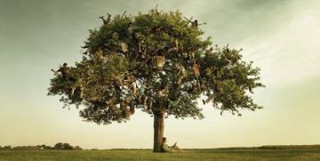 Biodescodificación. La enfermedad y el árbol genealógico