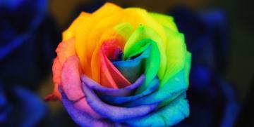 La terapia de los colores – Cada color se asocia a una emoción